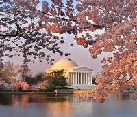 cherryblossomfestival Lists We Love: Beyond Disney World, Top 10 Great Spring Break Trips for Families!